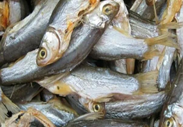 鱼干热泵烘干机解决海产品干燥问题